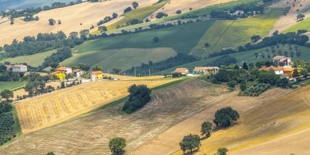 Si valorizza tutto, ma non il paesaggio agrario