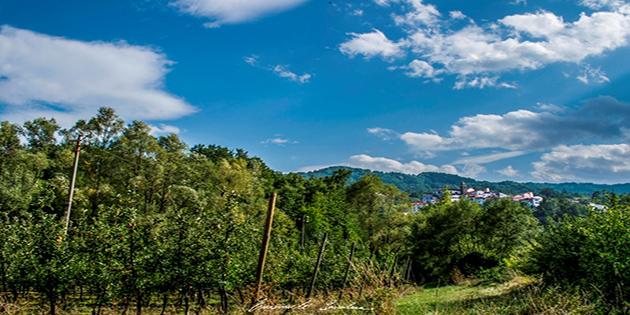 agricoltura a Castel del Giudice - Credit Emanuele Scocchera