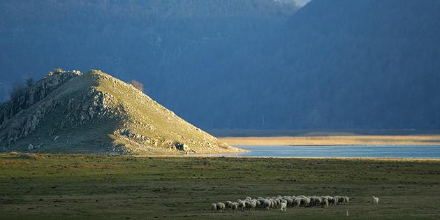 Parco-del-Matese-terra-ricca-di-storia-e-di-sapori-avvolta-in-una-natura-suggestiva-tra-Campania-e-Molise-3