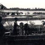 Borodol 1980. Sulla riva del Kopotokko.